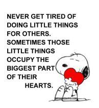 lil things